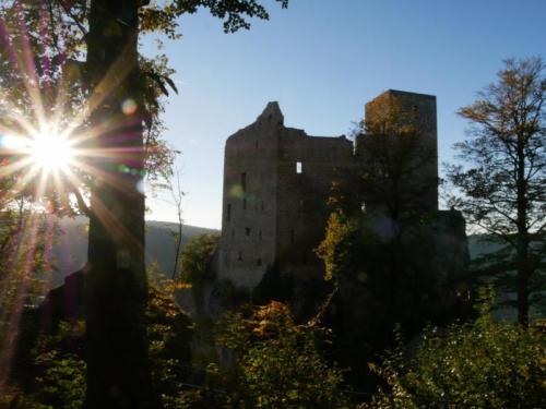 Ruine ReußensteinP1110298