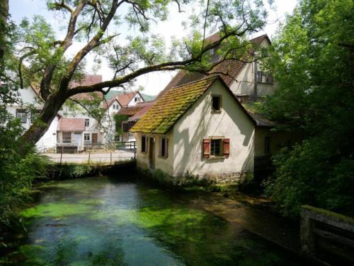 P1090229alte Mühle