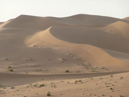 Libyen2008 027
